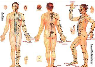 acupunctuur zoetermeer
